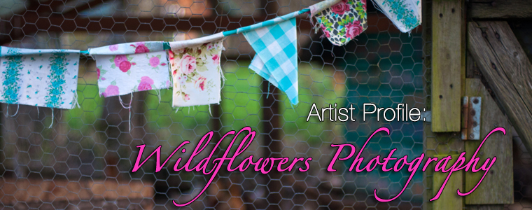 Post image for Profile: Wildflowers Photography